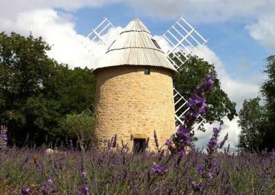 Un des moulins à vent du parcellaire de Galiot